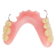 保険適用義歯